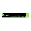 company-logo-bamboo